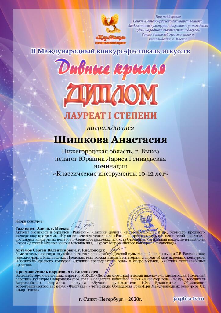 Шишкова Анастасия Диплом